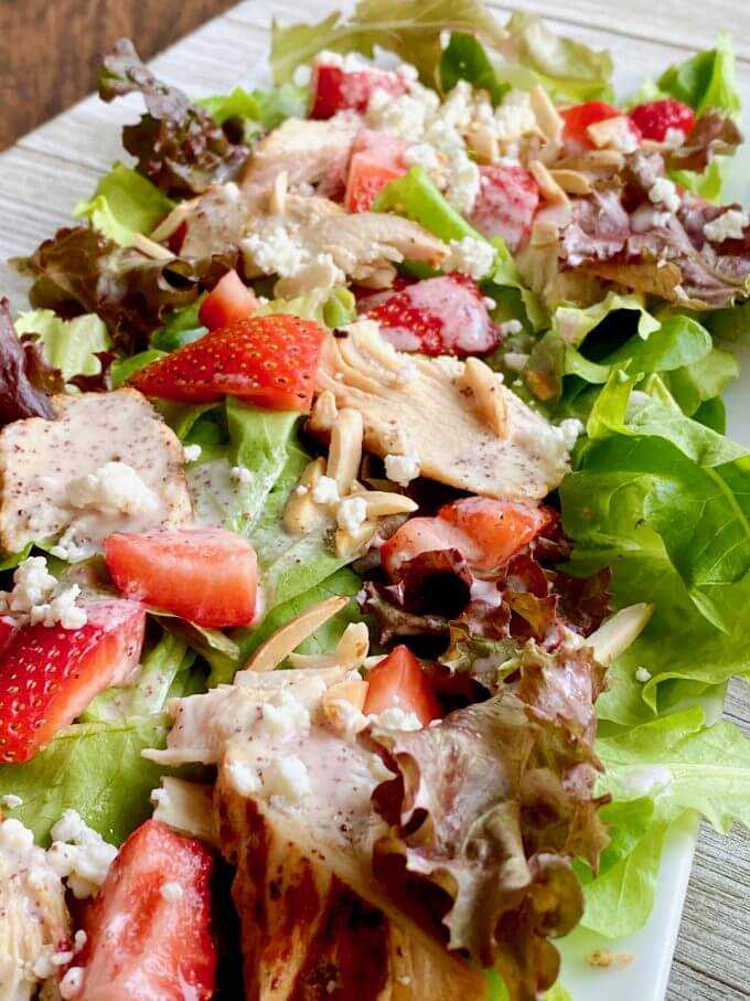 Up close picture of chicken poppyseed salad